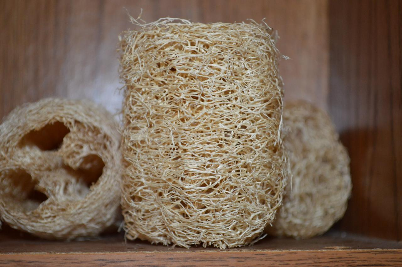 Homegrown 3' Luffa (Loofah) sponge